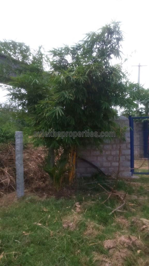 Agricultural Plot for Sale in Hosur, Bangalore - 1 Acres - 6229025