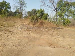 35 lakhs to 40 lakhs - Agricultural Land, Farmland for Sale