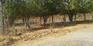 Agricultural Land in Ibrahimpatnam|FarmLand for Sale in