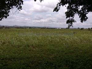 1 crore-2 crores- Agricultural Land in Bangalore|1 crore-2 crores