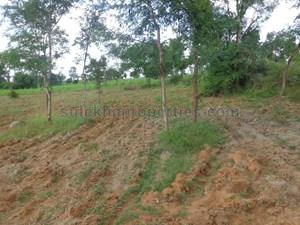 11 lakhs-20 lakhs- Agricultural Land in Bangalore|11 lakhs-20 lakhs