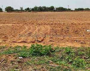Agricultural Land in Mansanpally|FarmLand for Sale in Mansanpally