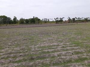 Agricultural Land in Nedungal, Vandavasi, Farm Land For Sale