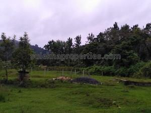 Plots & Land for Resale in Daswal Road, Madikeri - 12 Cent