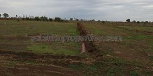 DTCP Approved Plots in Arakkonam | DTCP Approved Plots for