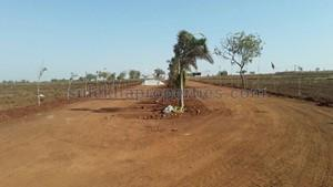 Agricultural Land in Shankarpally|FarmLand for Sale in Shankarpally