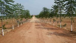 Agricultural Land in Srisailam Highway|FarmLand for Sale in